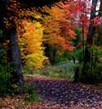 Centennial Park, Moncton, N.B., Canada
