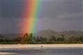 Swimming beneath the rainbow