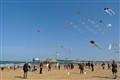 TheHague-Kites