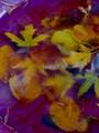Leaves in a frozen birdbath.
