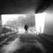 2012-01-31 Solitude  IMG_0944