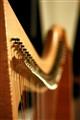 Harp: Canon 50mm F/1.8