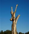Wooden Lady