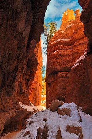 Navajo Trail 2010 34217