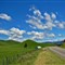 Scenic: NZ North Island