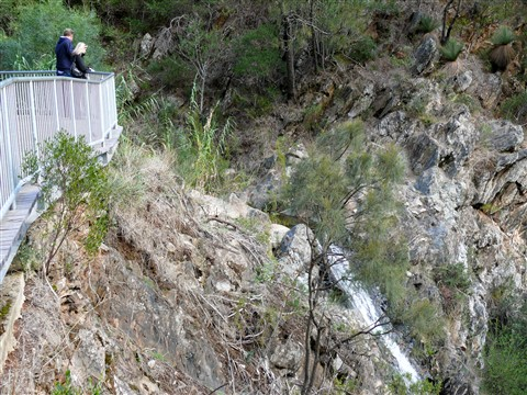 P1060304_waterfall gully_20100411_23