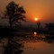 Sunset Keoloadev park: OLYMPUS DIGITAL CAMERA