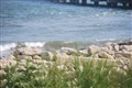 the rockwall/garden by the sea
