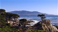 cypress point view