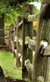 Belle Mead Fence