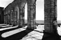 Under the Shade of Volubilis