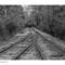 Train_L1001263