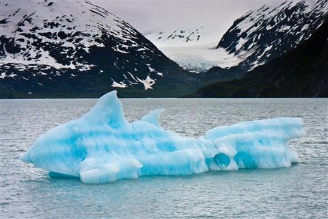 Dolphin Ice-Portage Glacier-
