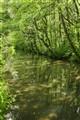 C&W 46 Cromford Canal Cromford