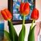 Three tulips for my wife, International Women's Day