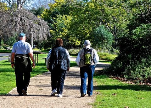 The Family Walk1