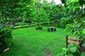 Gomez Garden