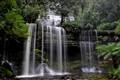 Russell Falls,Tasmania