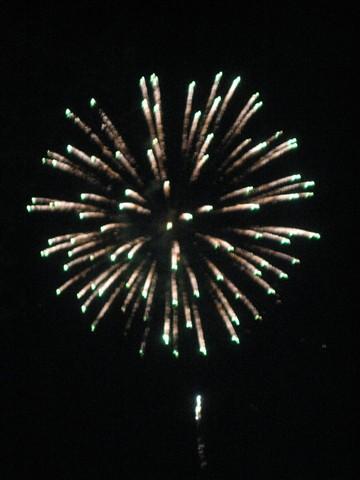 Standard Firework