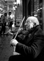 fiddler in torino