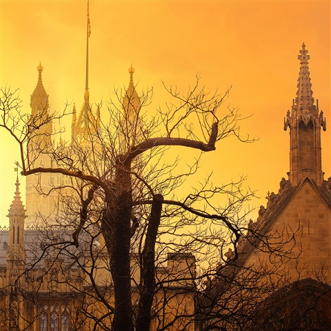 Golden London8