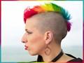 Mog's multicoloured mohawk