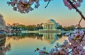 Early light upon the Thomas Jefferson Memorial