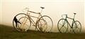 Big Standing Bikes
