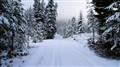 Northwestern Montana Christmas Morning