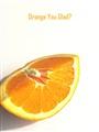Orange cover