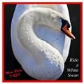 white swan album