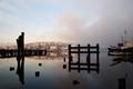 urban lake view fog