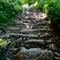 Path below Jingleshaugh