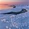 Icy Daybreak 4-5