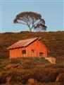Orange hut