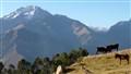 Peruvian Landscape Original