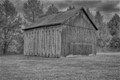 dull day, old barn