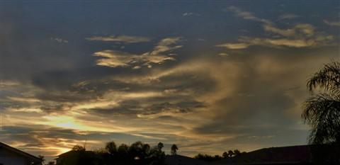 gene-sunset