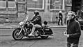 Wiltshire Rider
