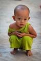 Tiny bundle of green, Yangon, Myanmar