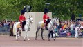 Royal horse guards in action