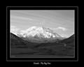Denali - The Big One