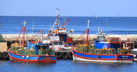 fishing_boats_IMG_8521