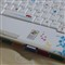 webPC029079