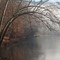 Bending Trees over the Clarion River No3 (D700): Trees bending over the Clarion River in Cook Forest State Park, Pennsylvania on a foggy morning during Winter.