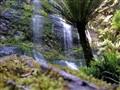 Marriott Falls Tasmania