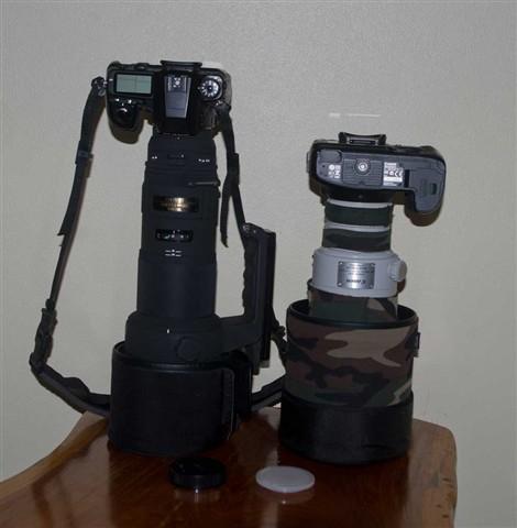 IMGP4052