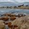 Monterey_Panorama small