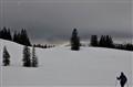 snowynightfall