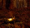 In the Rasos Cemetery, Vilnius, Lithuania